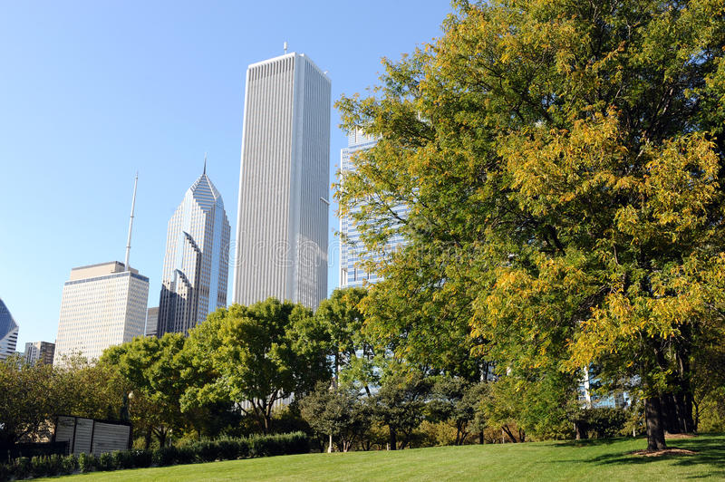Download Skyscrapers of Chicago stock photo. Image of green, clear - 21827348