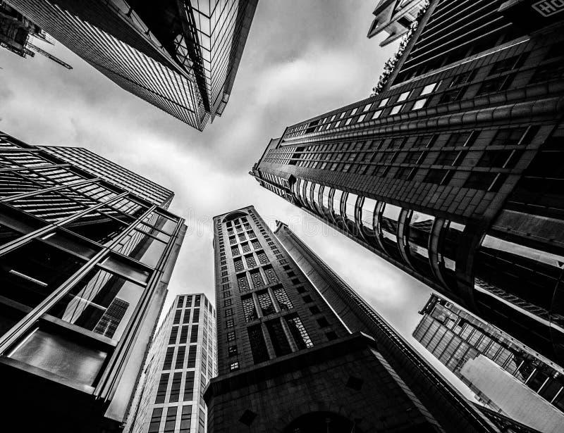 Skyscrapper fotografia royalty free