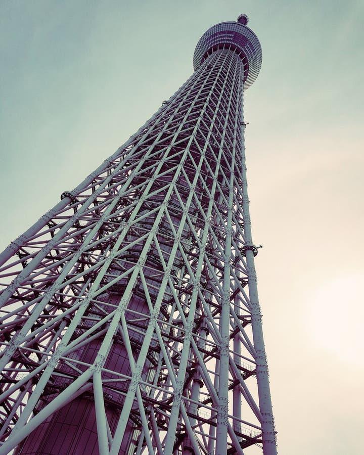 skytree东京 库存图片