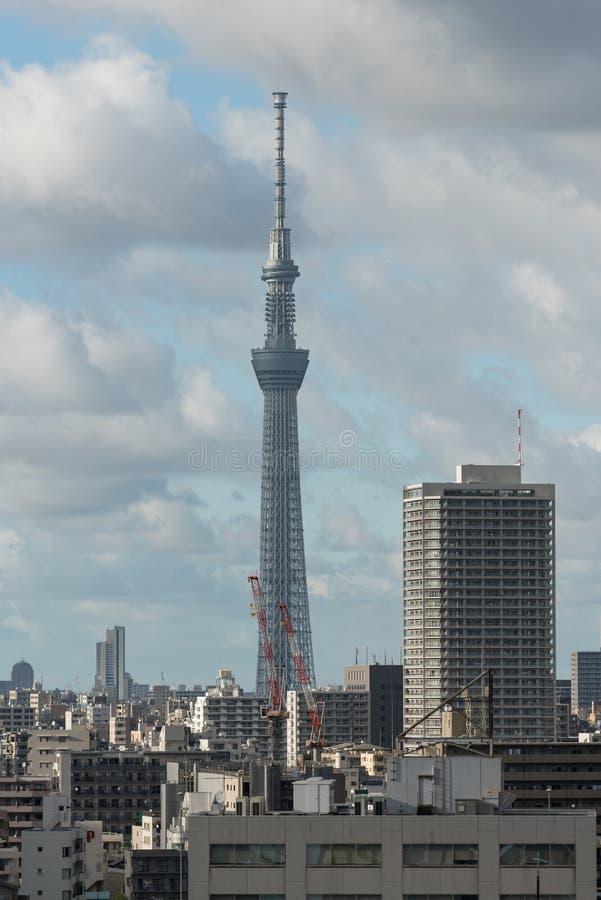 Skytree控制东京地平线的塔地标 r 库存照片