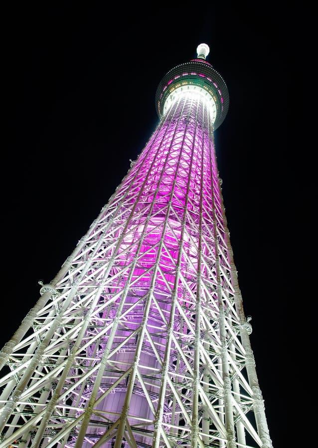 Skytree de Tokyo la nuit photographie stock libre de droits