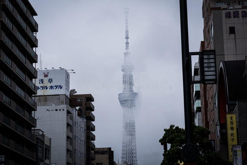 Skytree de Tokyo fotografia de stock