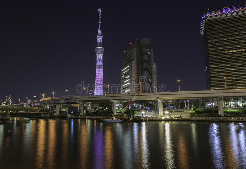 Skytree do Tóquio na noite fotos de stock royalty free
