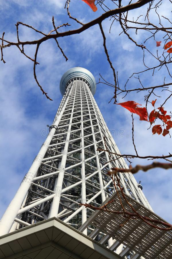 Skytree i Tokyo, Japan arkivbild