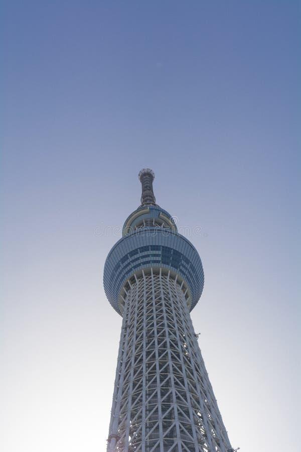 Skytree mit klarem Hintergrund stockbild
