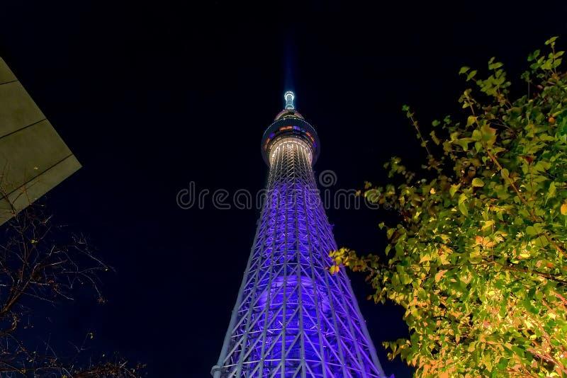Skytree van Tokyo stock fotografie