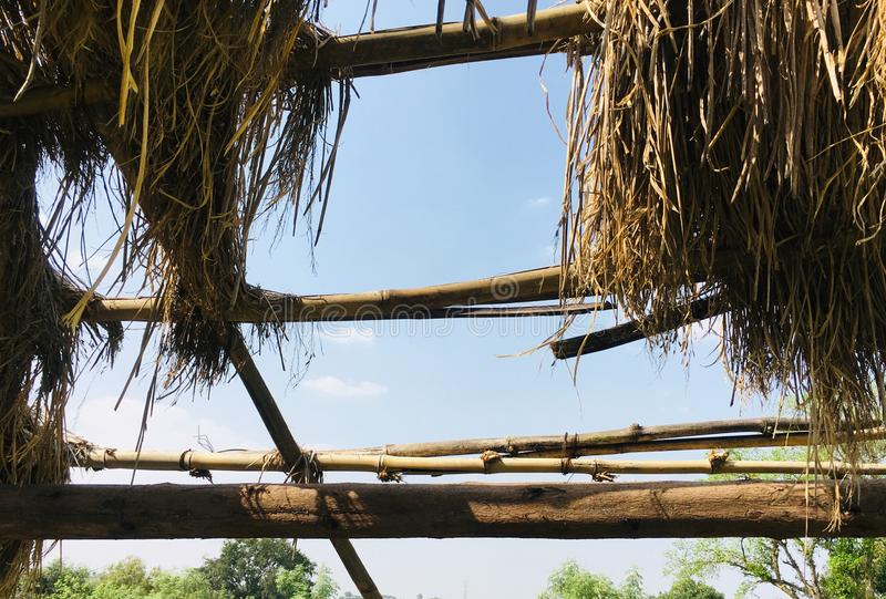 Skyview from Thatch Roof in a farm. As JPG File stock photo