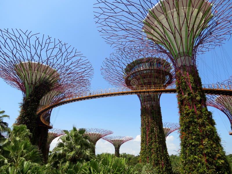 Skyway dans les jardins par la baie image stock
