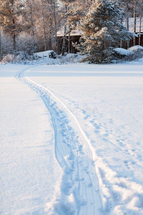 Sl?desp?r i sn? p? vinterdagen arkivfoto