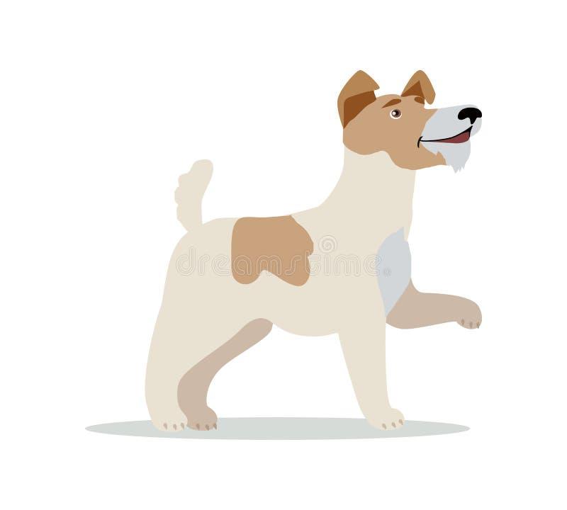 Slät foxterrierhundavel på vit royaltyfri illustrationer