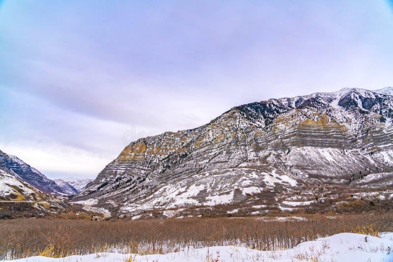 Sl?ende berg med spridda tr?d p? dess dolda lutning f?r sn? royaltyfri foto