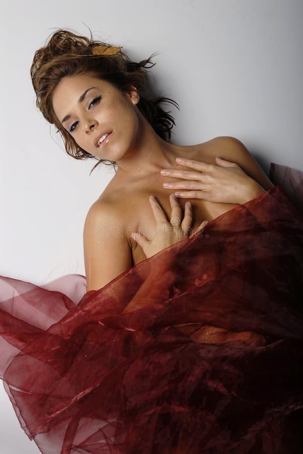 slågen in sexig silk kvinna royaltyfria foton