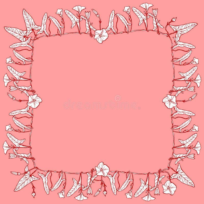 Slår ut den blom- fyrkantiga ramen för vindan, gränskransen för din textfilial med sidor och blommakonturer på rosa röd burgundy  vektor illustrationer