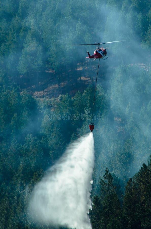 Slåss en skogsbrand arkivbilder