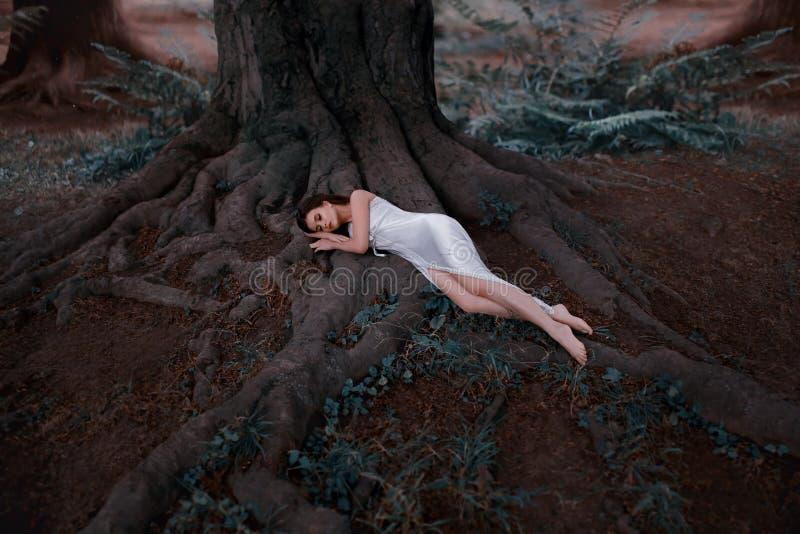 Slaapschoonheid met lang haar in een witte, uitstekende, nachtjapon Het meisje ligt op de reusachtige wortels van een oude boom stock foto's