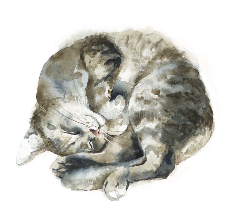 Slaapt de waterverf grijze kat stock illustratie