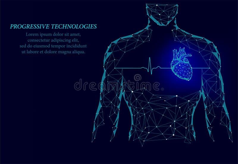 Slaat het gezonde hart van het mensensilhouet 3d geneeskunde model lage poly Driehoek verbonden het punt blauwe achtergrond van d royalty-vrije stock afbeeldingen
