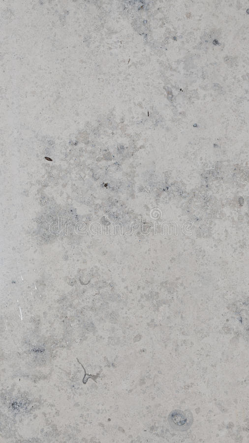 Slab marble with ancient shell. Large slab of mottled light gray and dark gray marble with a flat smooth polished surface spots and ancient shell stock photo