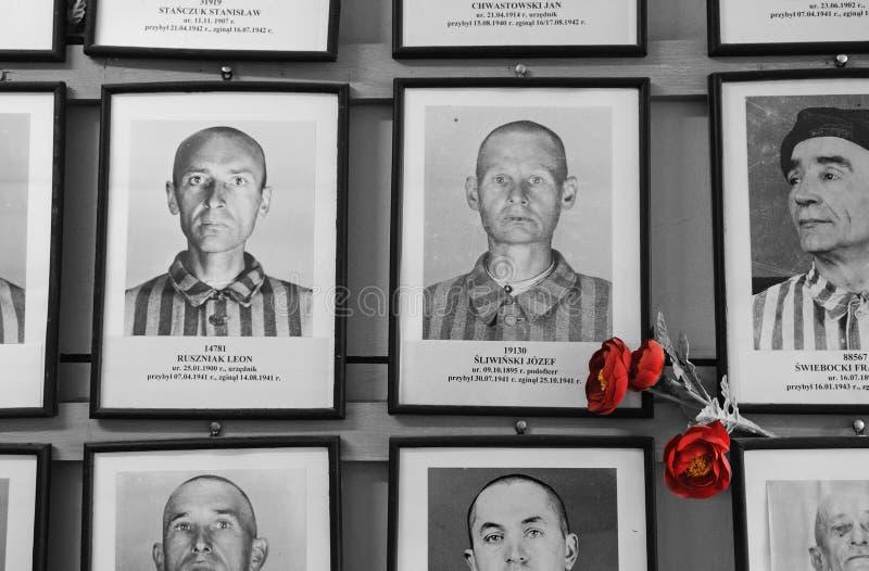 Slachtoffers van Auschwitz royalty-vrije stock foto