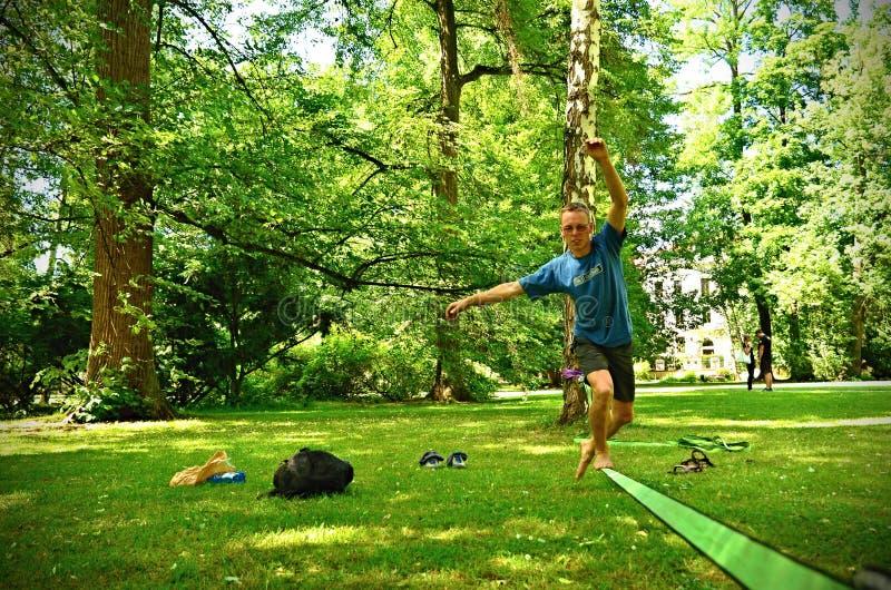 Slackline in park stock foto