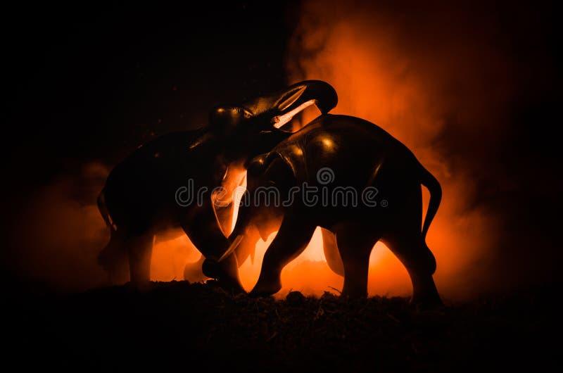Slag van olifanten Werken de olifants fighing silhouetten op brandachtergrond of Twee olifantsstieren op elkaar in en communicere royalty-vrije stock foto's