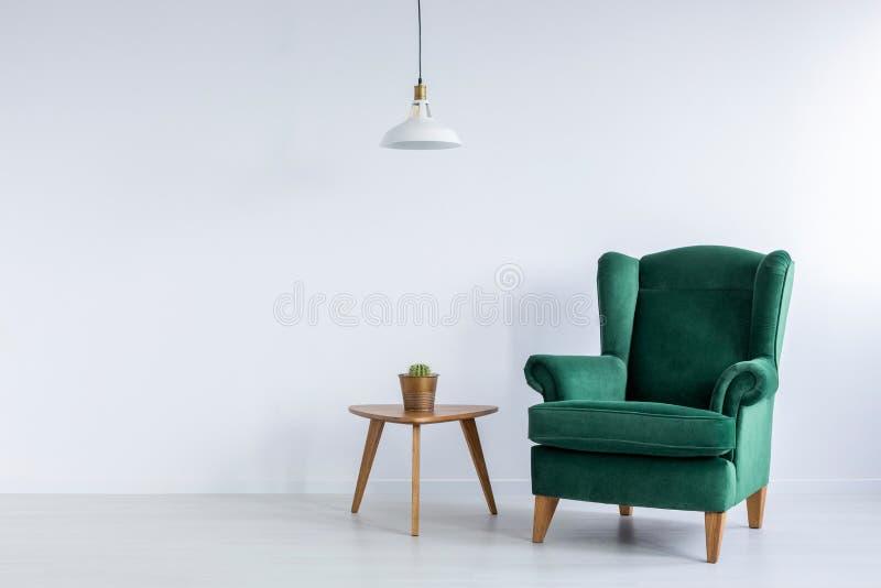 Slags tvåsittssoffa, smaragdgräsplan, vingfåtölj och en kaktus på en trätabell i en vit vardagsruminre med kopieringsutrymme Verk royaltyfria bilder