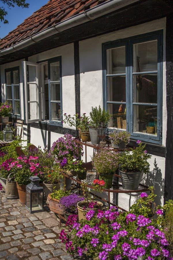 Slags tvåsittssoffaträdgård med blommor royaltyfri foto