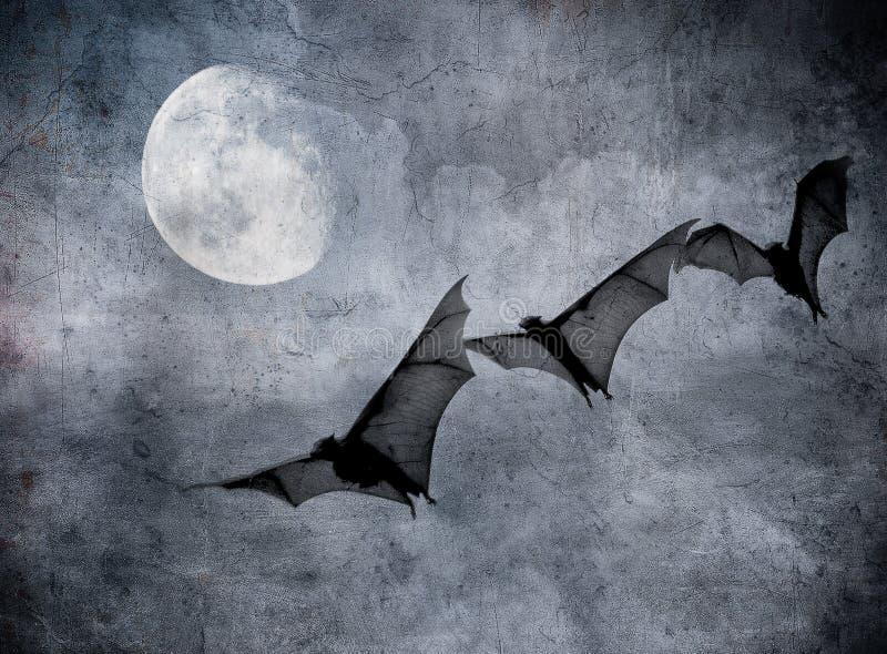 Slagträn i den mörka molniga skyen, halloween bakgrund royaltyfri illustrationer