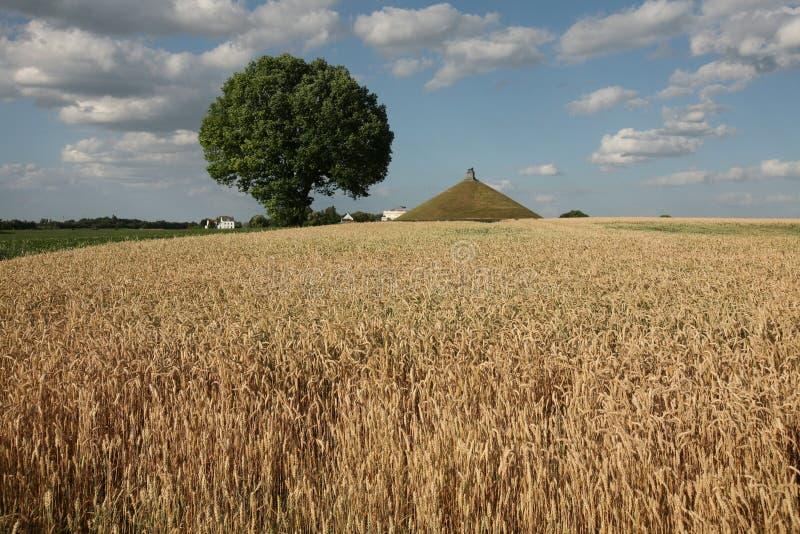 Slagveld van de Slag van Waterloo (1815) dichtbij Brussel, Belg stock foto's