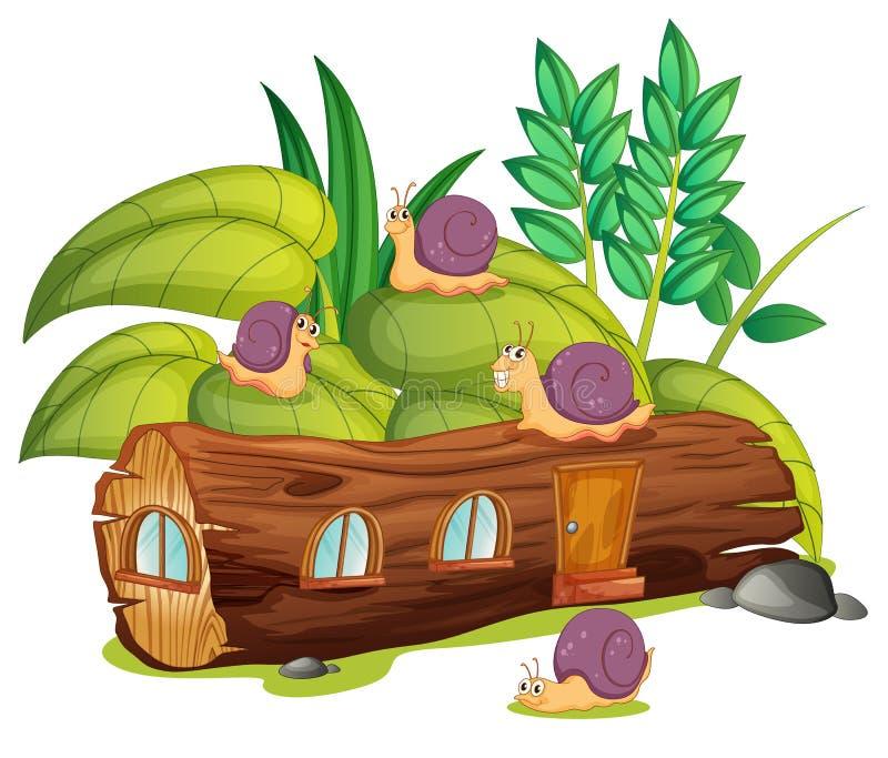 Slakken en een houten huis stock illustratie