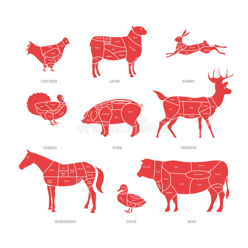 Slaktaren shoppar begreppsvektorillustrationen stock illustrationer