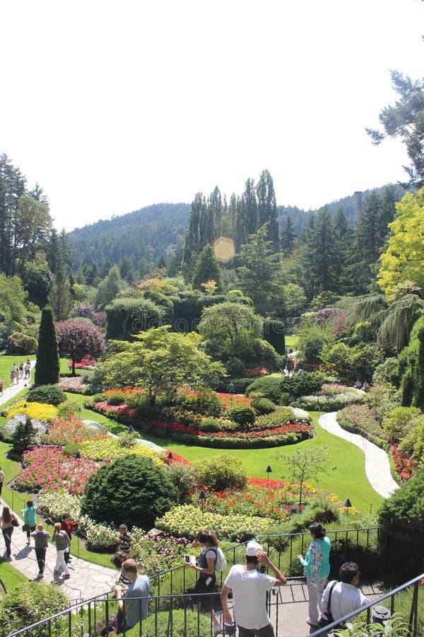 Slaktares trädgård royaltyfria bilder