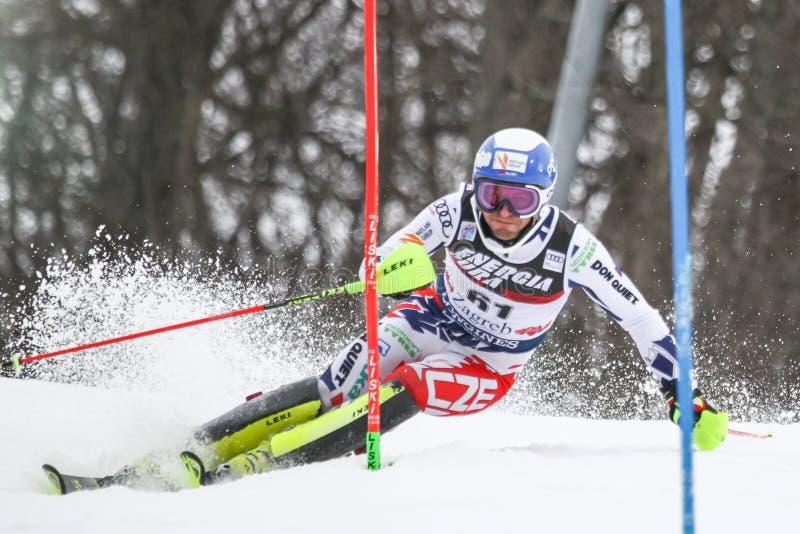 Slalom των ατόμων Παγκόσμιου Κυπέλλου Audi FIS στοκ εικόνες με δικαίωμα ελεύθερης χρήσης