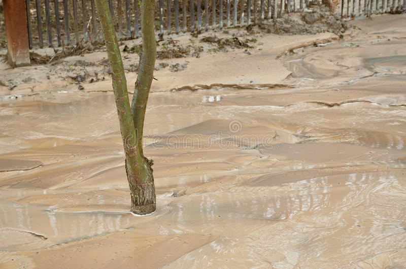 Slam efter mudflowen royaltyfri foto