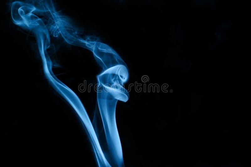 Slang in rook stock afbeelding