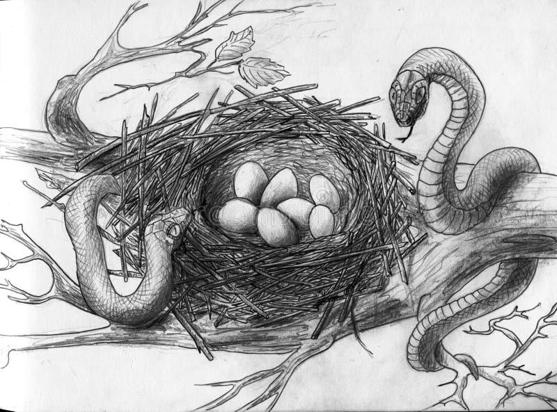 Slangen in het nest van de vogel stock illustratie