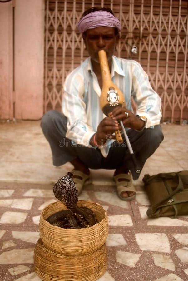 Slangenbezweerder, Jaipur, India stock afbeelding