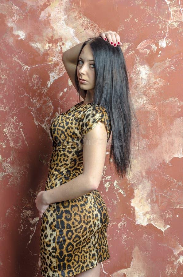 Slank donkerbruin meisje met lang haar in de kleding van de luipaarddruk royalty-vrije stock afbeelding