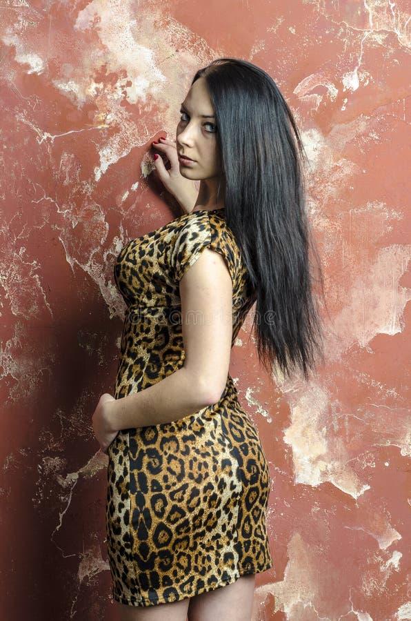 Slank donkerbruin meisje met lang haar in de kleding van de luipaarddruk stock foto