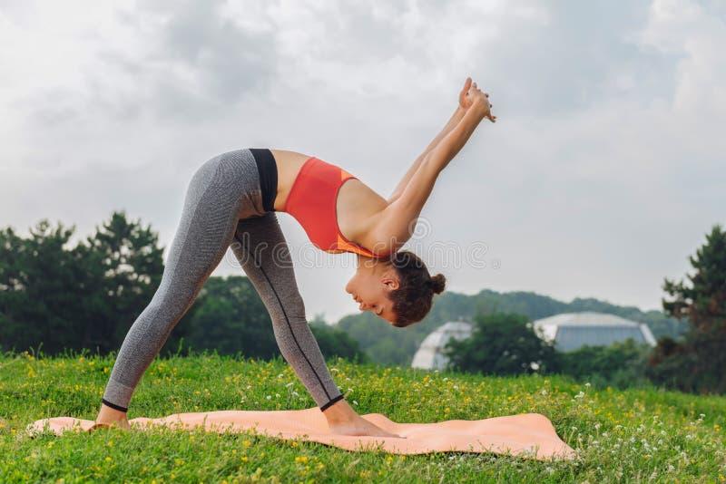 Slank idrottskvinna som in går för yogaanseendet på grönt gräs royaltyfria bilder
