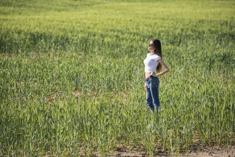 Slank kvinna i grönt fält fotografering för bildbyråer