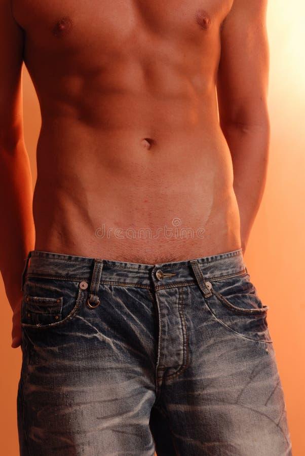 Slank mannetje in jeans royalty-vrije stock afbeelding