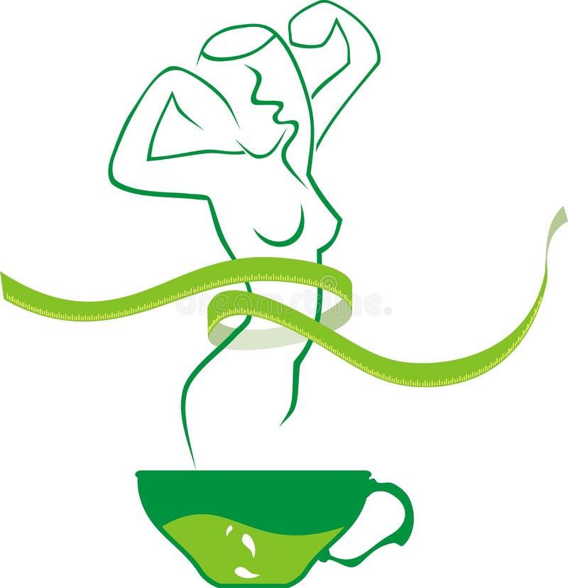 slank tea för skönhetgreen vektor illustrationer