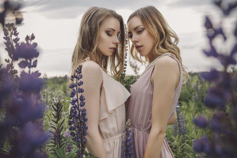 Slanka bräckliga två kvinnor för härlig brunettpassform med klara flawles arkivbild