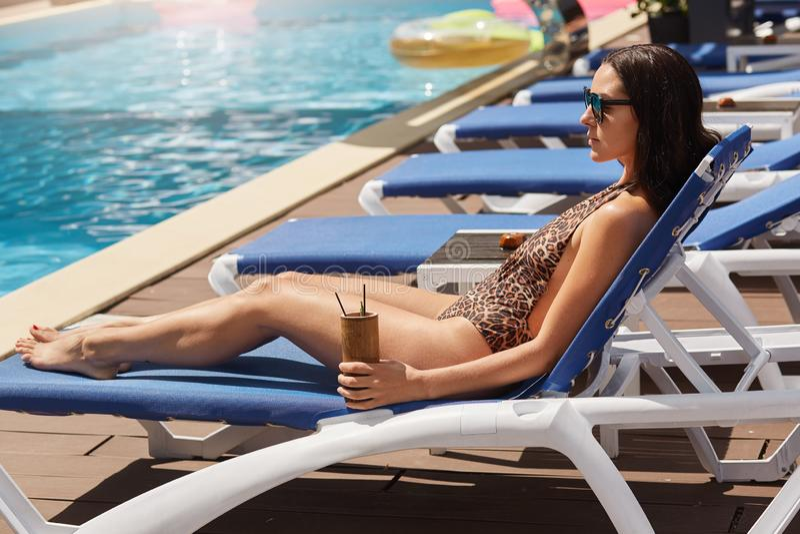 Slanke zwarte haired Europese vrouw die op blauwe chaise zitkamer die bij toevlucht liggen, in zonnebril en luipaard zwemmend kos royalty-vrije stock afbeeldingen