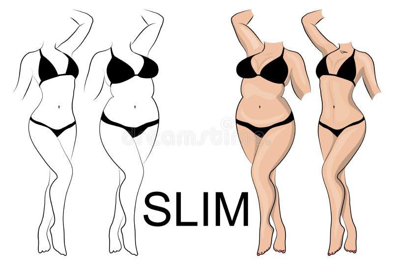 Slankheid en gewichtsverlies stock illustratie
