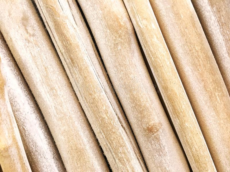 Slanted Rows of driftwood bunched together. Wooden twigs backgr. Ound stock image