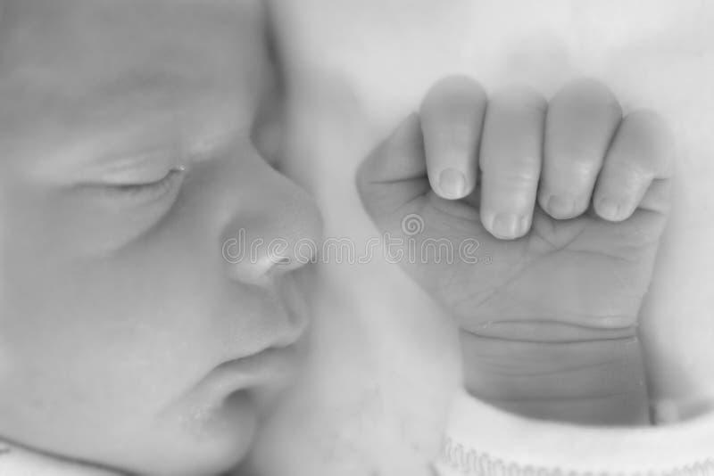 Slapen pasgeboren op het hoofdkussen royalty-vrije stock foto's