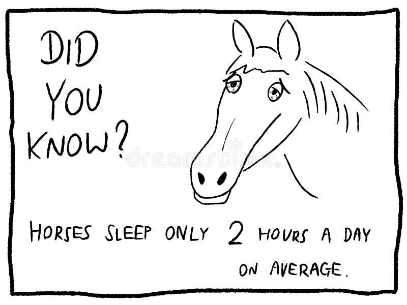 Slaperig paard royalty-vrije illustratie