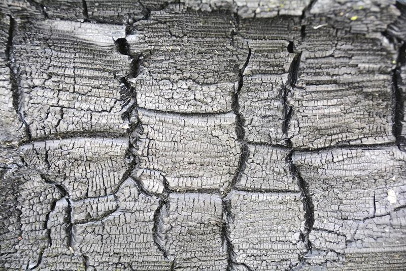 Radiocarbon dating bränt trä
